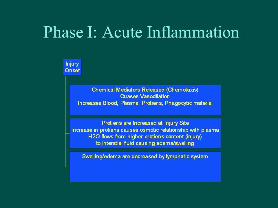 Phase I: Acute Inflammation