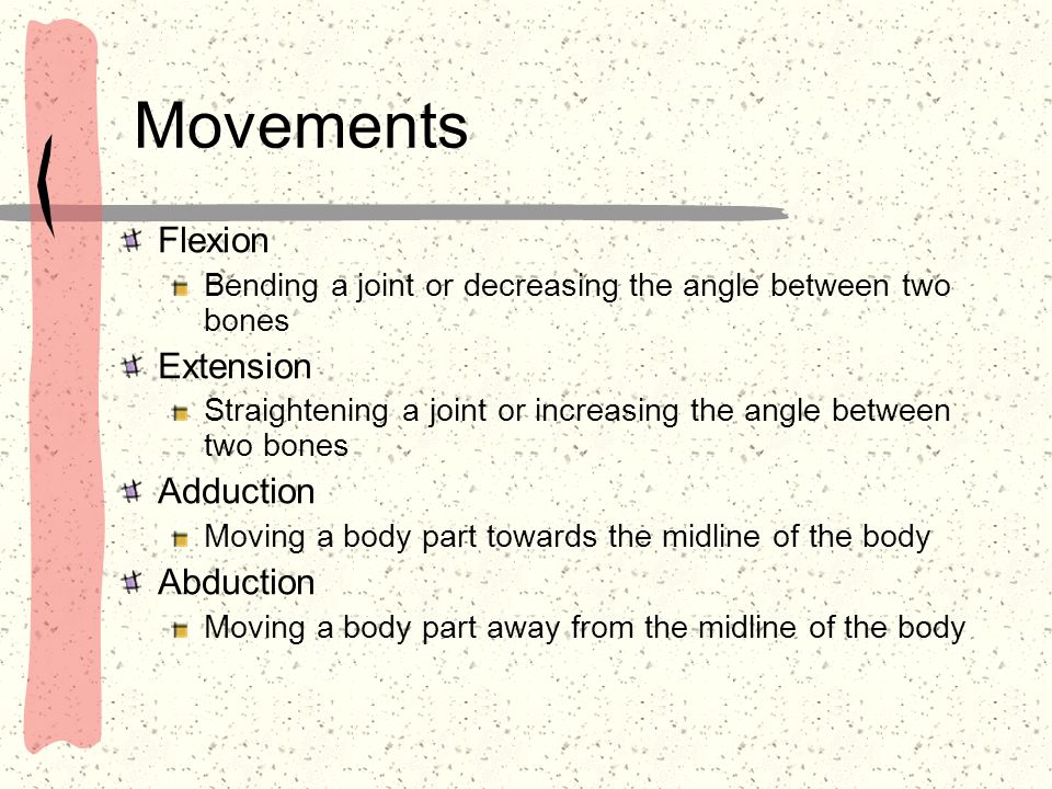 Movements Flexion Extension Adduction Abduction