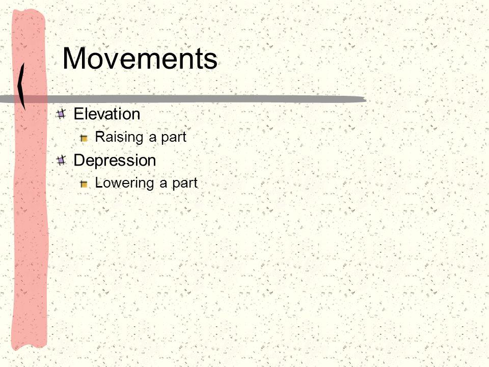 Movements Elevation Raising a part Depression Lowering a part