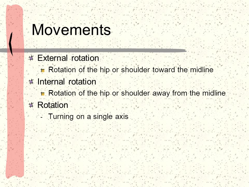 Movements External rotation Internal rotation Rotation