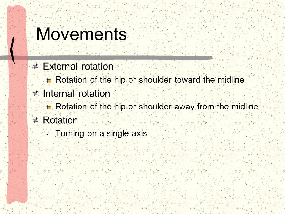 Movements External rotation Internal rotation Rotation