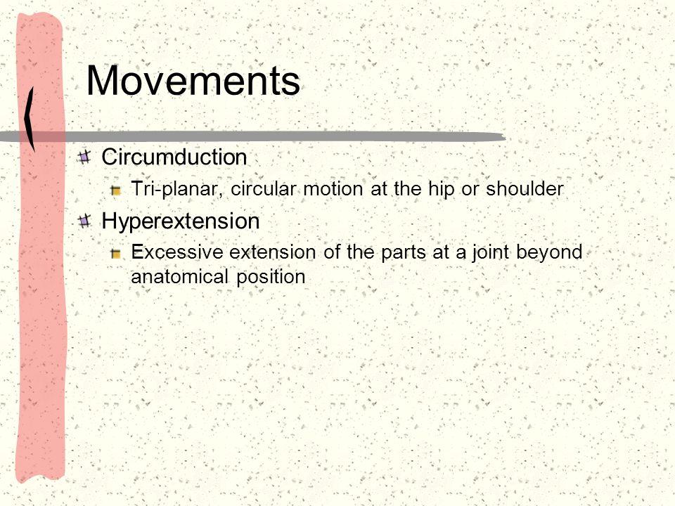 Movements Circumduction Hyperextension