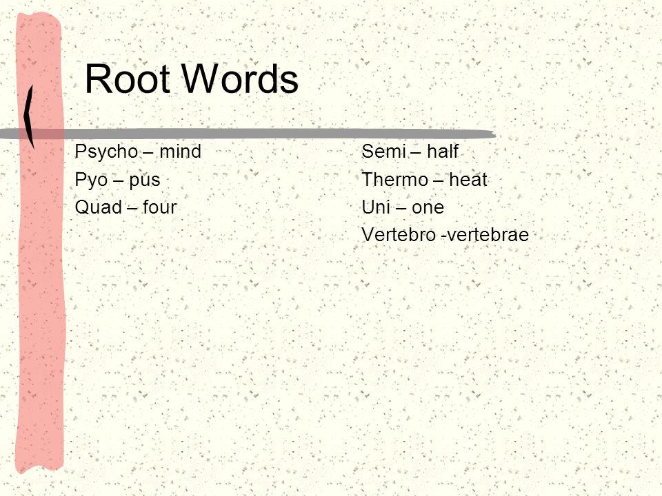 Root Words Psycho – mind Pyo – pus Quad – four Semi – half
