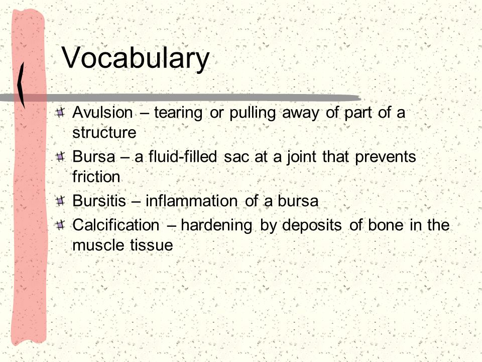 Vocabulary Avulsion – tearing or pulling away of part of a structure