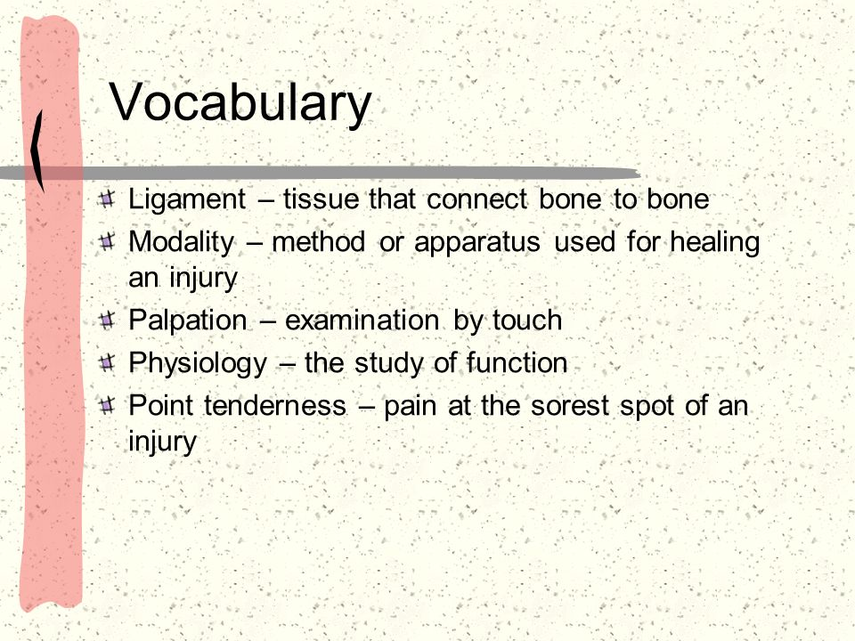 Vocabulary Ligament – tissue that connect bone to bone