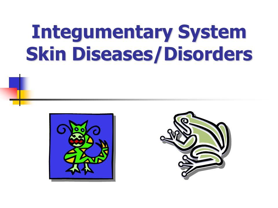 Integumentary System Skin Diseases/Disorders