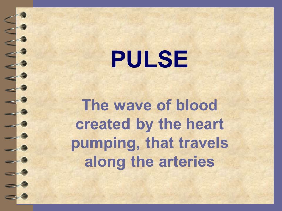 PULSE The wave of blood created by the heart pumping, that travels along the arteries