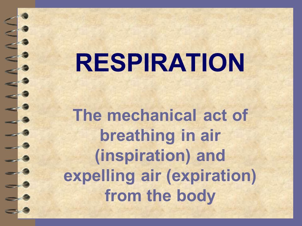 RESPIRATION The mechanical act of breathing in air (inspiration) and expelling air (expiration) from the body.