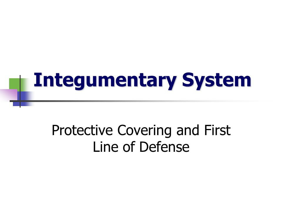 Protective Covering and First Line of Defense