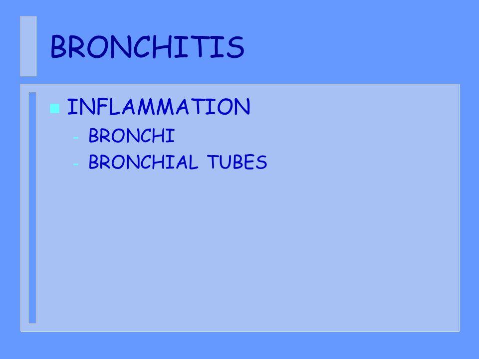 BRONCHITIS INFLAMMATION BRONCHI BRONCHIAL TUBES