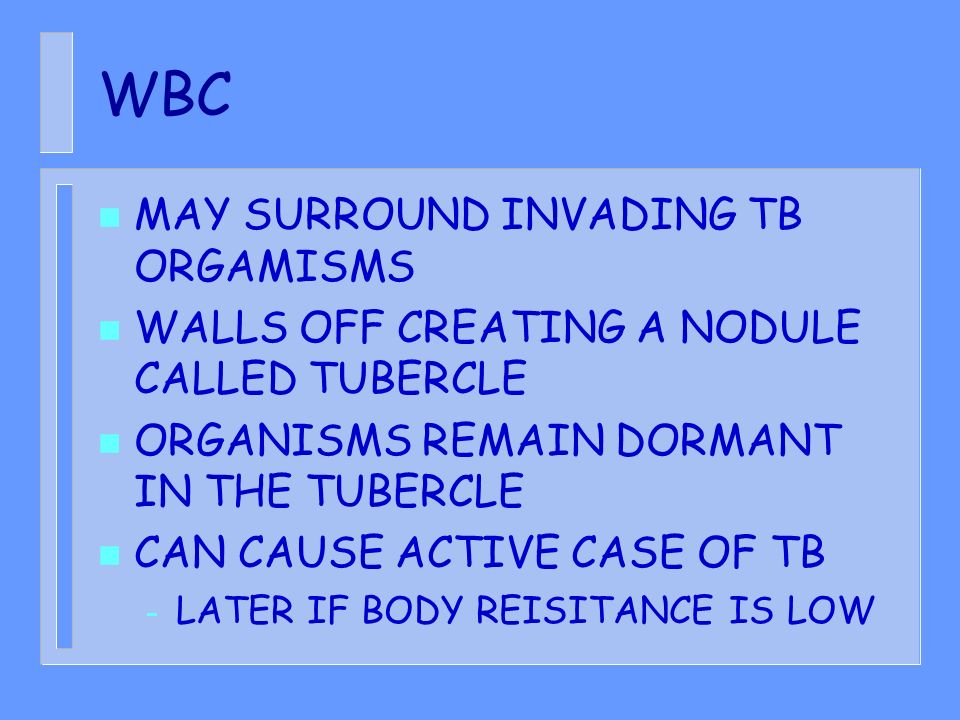 WBC MAY SURROUND INVADING TB ORGAMISMS