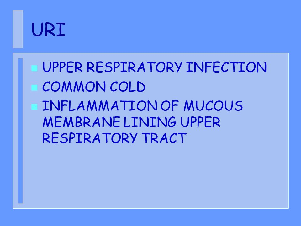 URI UPPER RESPIRATORY INFECTION COMMON COLD
