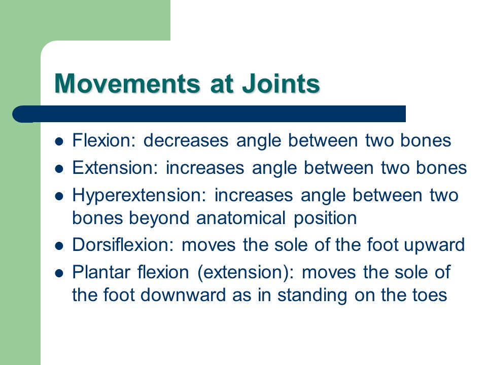 Movements at Joints Flexion: decreases angle between two bones