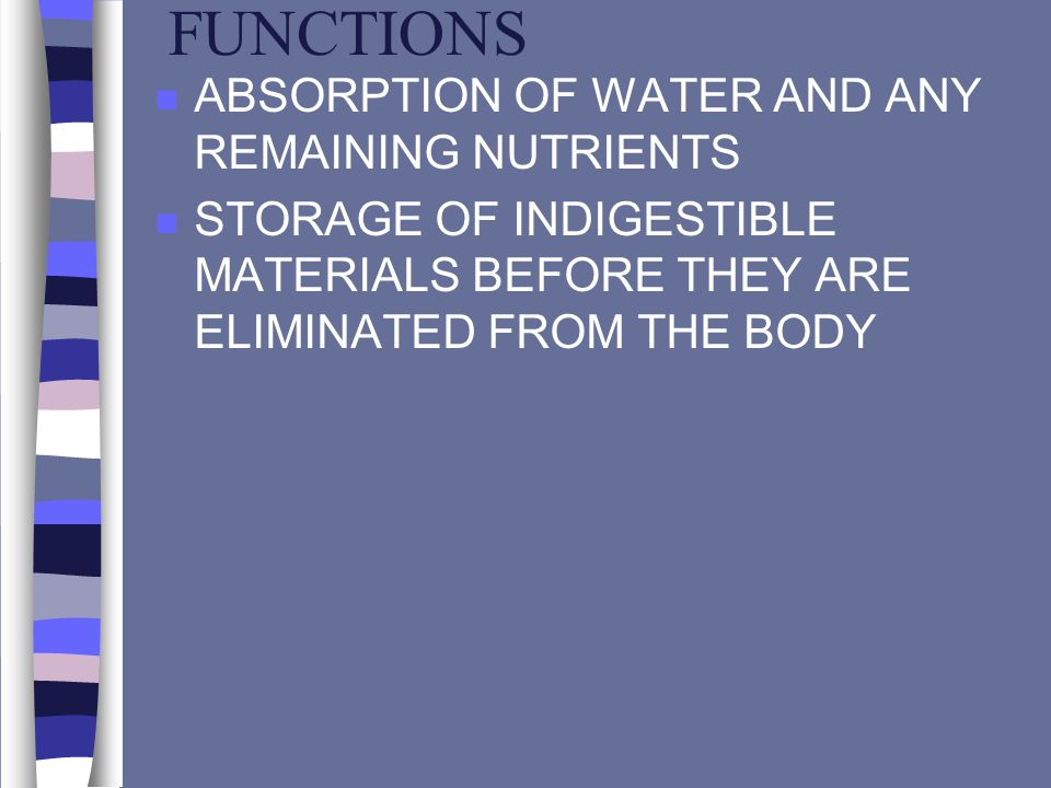 FUNCTIONS ABSORPTION OF WATER AND ANY REMAINING NUTRIENTS
