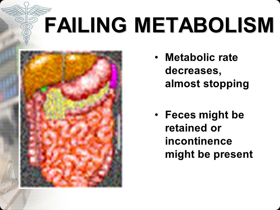 FAILING METABOLISM Metabolic rate decreases, almost stopping