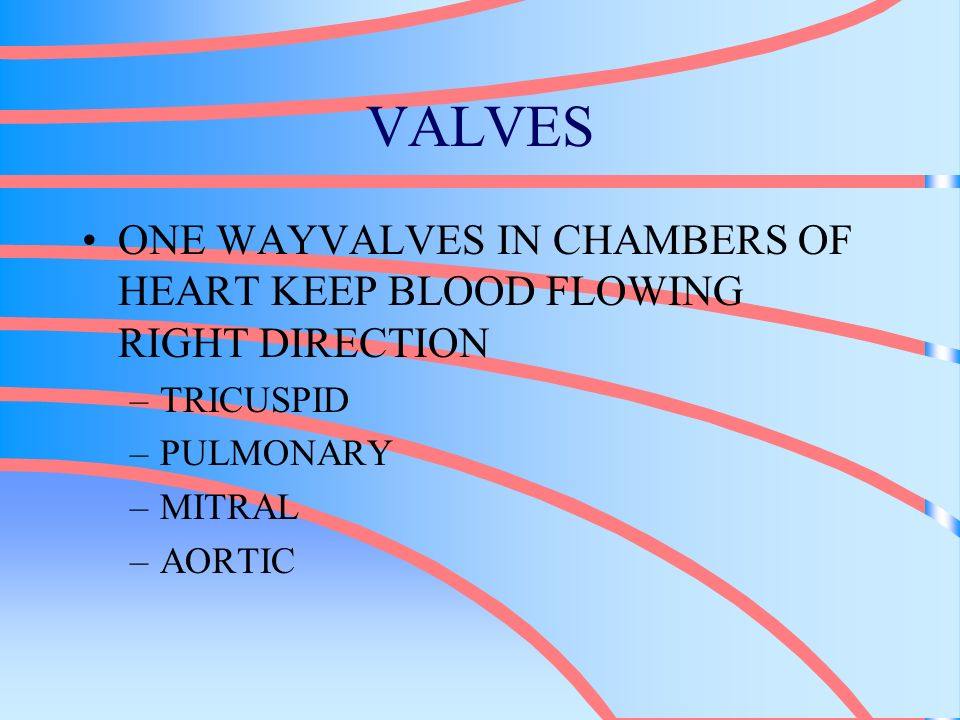 VALVES ONE WAYVALVES IN CHAMBERS OF HEART KEEP BLOOD FLOWING RIGHT DIRECTION. TRICUSPID. PULMONARY.