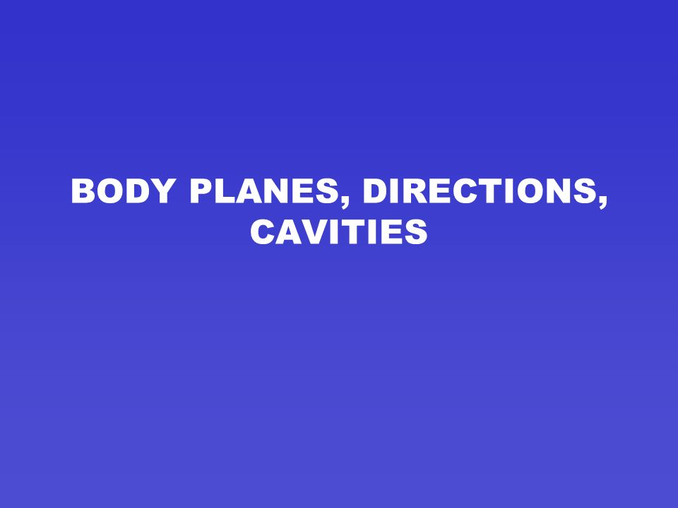 BODY PLANES, DIRECTIONS, CAVITIES