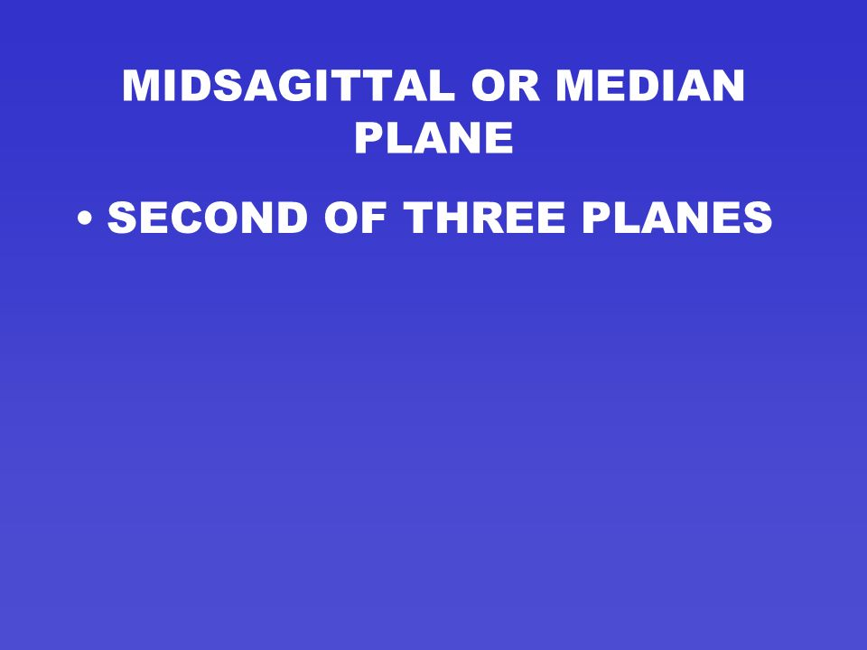 MIDSAGITTAL OR MEDIAN PLANE