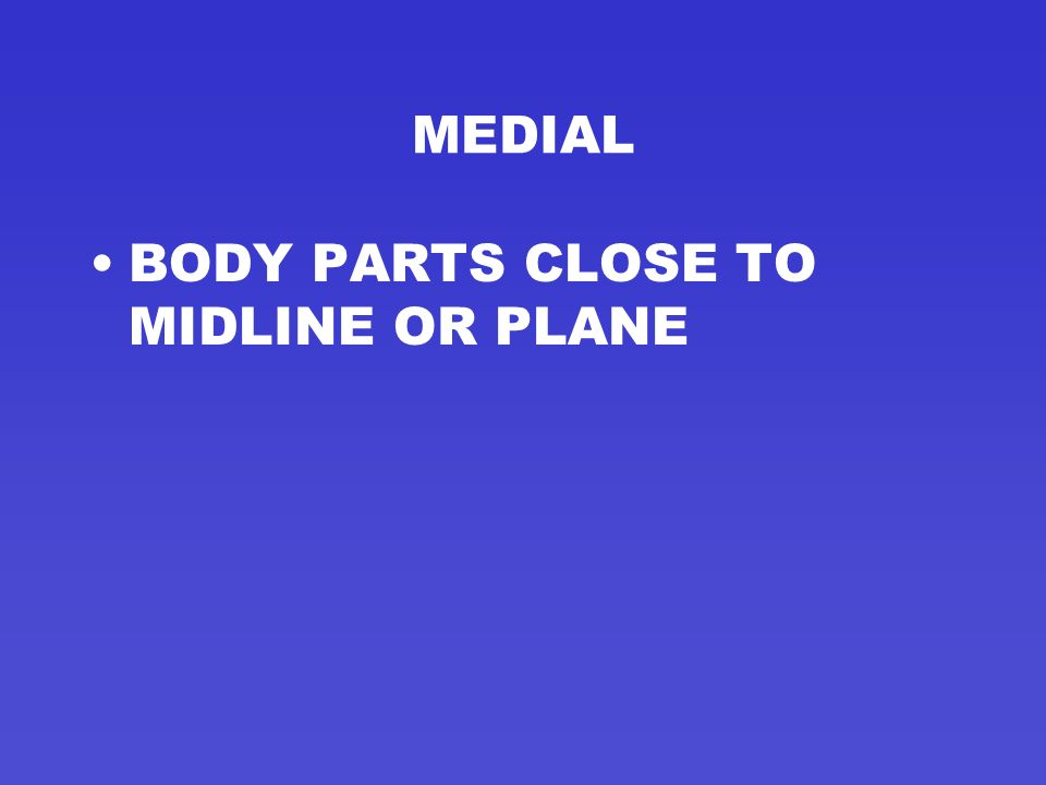 MEDIAL BODY PARTS CLOSE TO MIDLINE OR PLANE