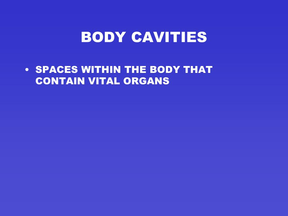 BODY CAVITIES SPACES WITHIN THE BODY THAT CONTAIN VITAL ORGANS