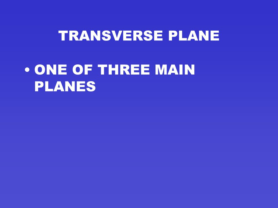 TRANSVERSE PLANE ONE OF THREE MAIN PLANES