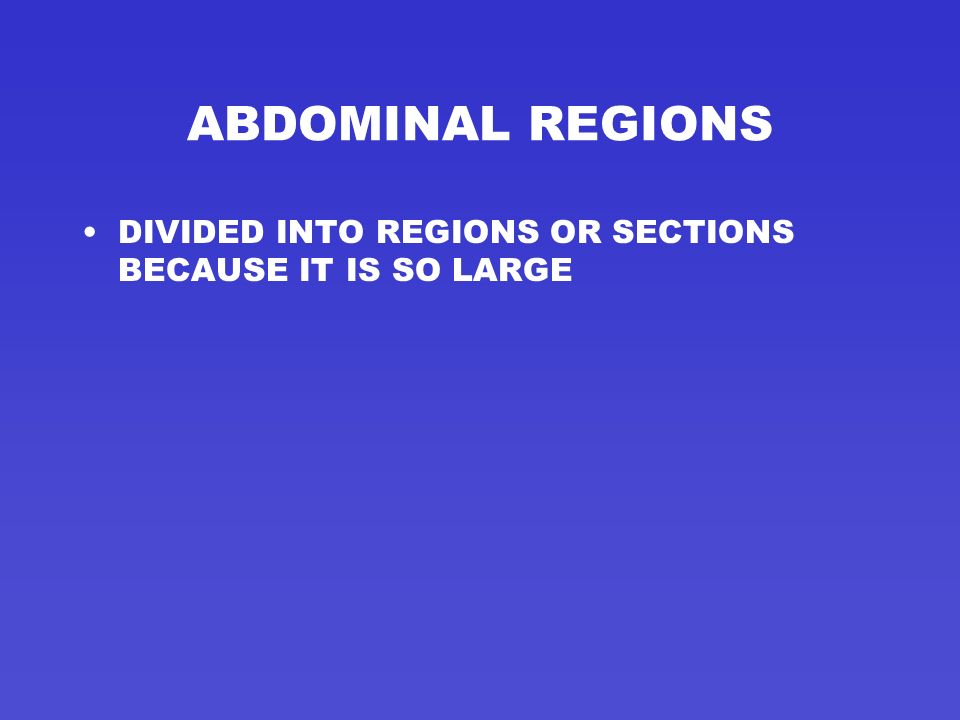 ABDOMINAL REGIONS DIVIDED INTO REGIONS OR SECTIONS BECAUSE IT IS SO LARGE