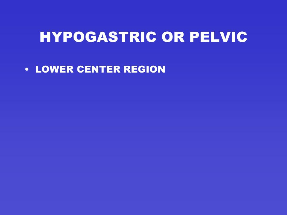 HYPOGASTRIC OR PELVIC LOWER CENTER REGION