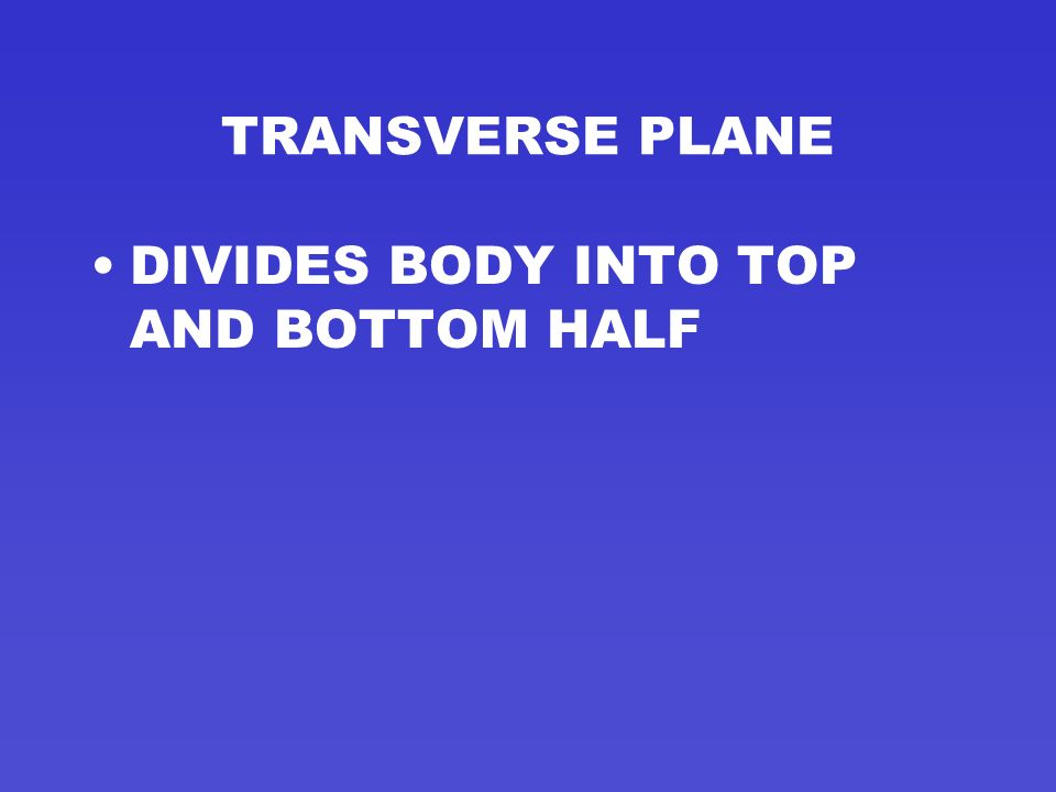 TRANSVERSE PLANE DIVIDES BODY INTO TOP AND BOTTOM HALF