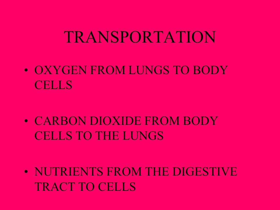 TRANSPORTATION OXYGEN FROM LUNGS TO BODY CELLS