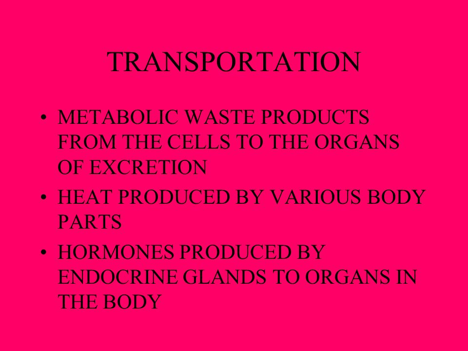 TRANSPORTATION METABOLIC WASTE PRODUCTS FROM THE CELLS TO THE ORGANS OF EXCRETION. HEAT PRODUCED BY VARIOUS BODY PARTS.