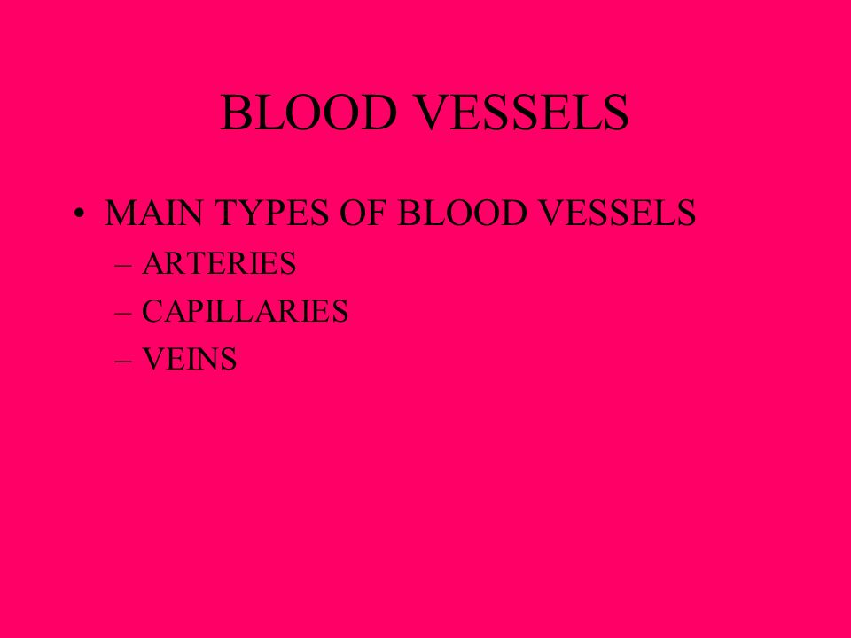 BLOOD VESSELS MAIN TYPES OF BLOOD VESSELS ARTERIES CAPILLARIES VEINS
