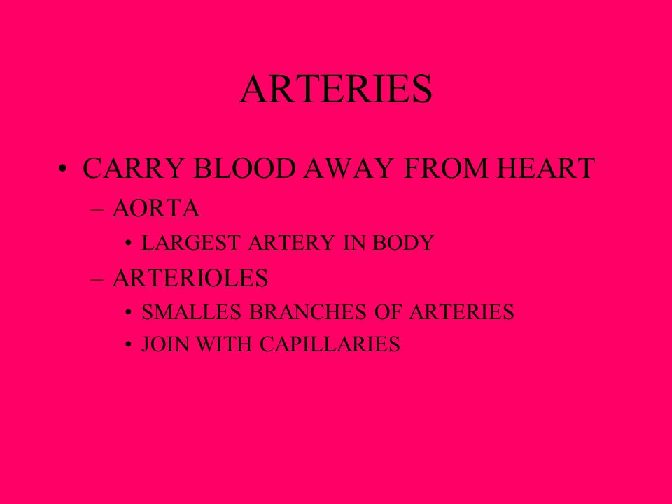 ARTERIES CARRY BLOOD AWAY FROM HEART AORTA ARTERIOLES