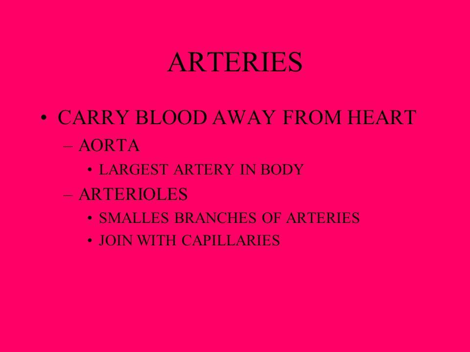 ARTERIES CARRY BLOOD AWAY FROM HEART AORTA ARTERIOLES