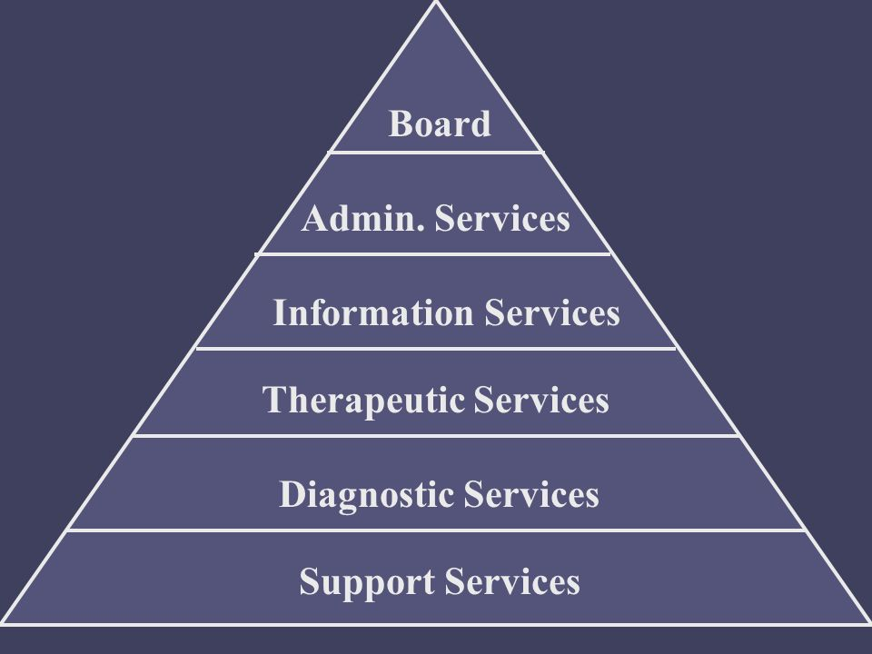 Board Admin. Services Information Services Therapeutic Services