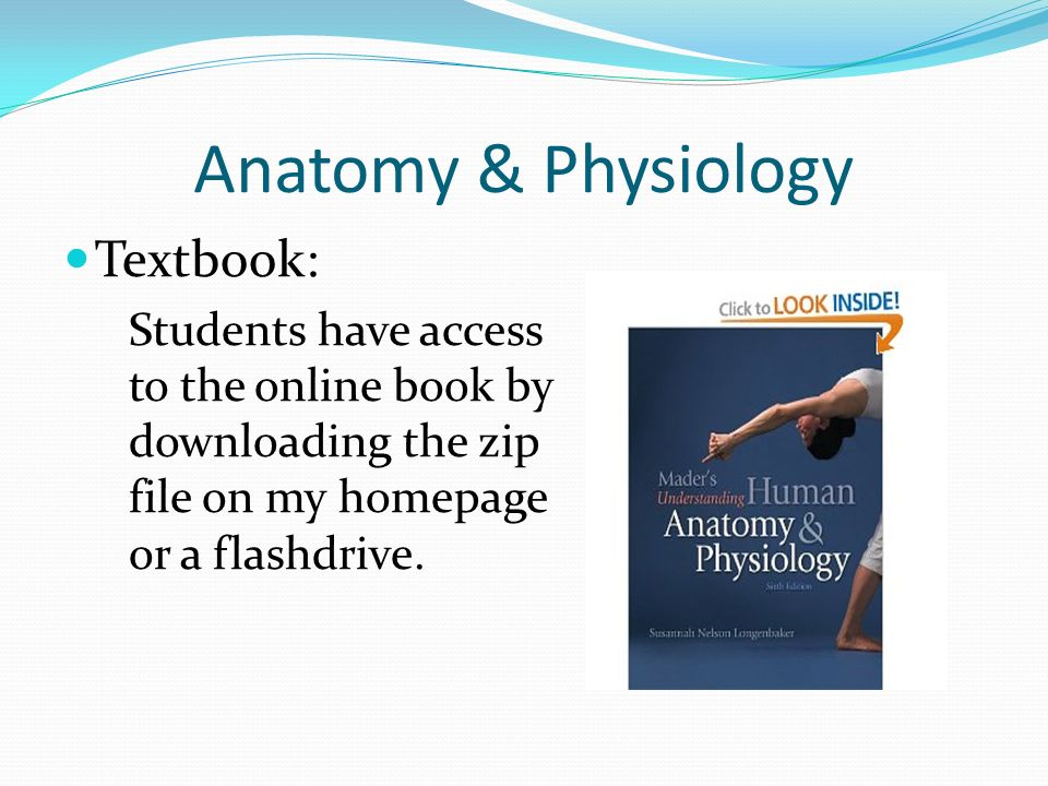 Groß Online Anatomy And Physiology Textbook Fotos - Menschliche ...