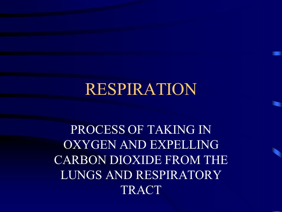 RESPIRATION PROCESS OF TAKING IN OXYGEN AND EXPELLING CARBON DIOXIDE FROM THE LUNGS AND RESPIRATORY TRACT.
