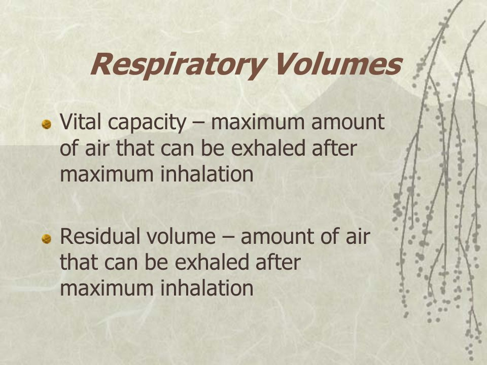 Respiratory Volumes Vital capacity – maximum amount of air that can be exhaled after maximum inhalation.