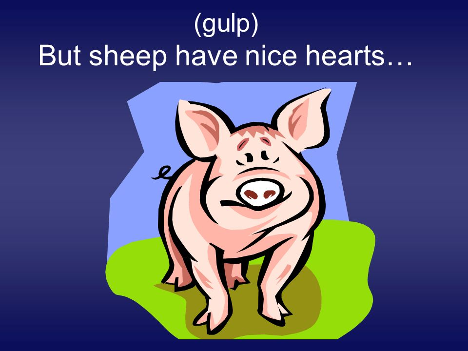 (gulp) But sheep have nice hearts…