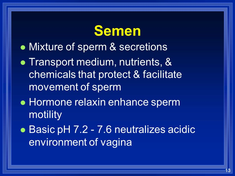 Semen Mixture of sperm & secretions