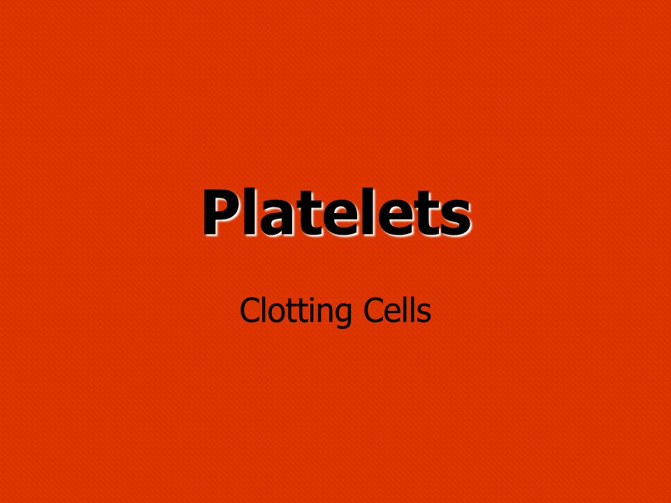 Platelets Clotting Cells