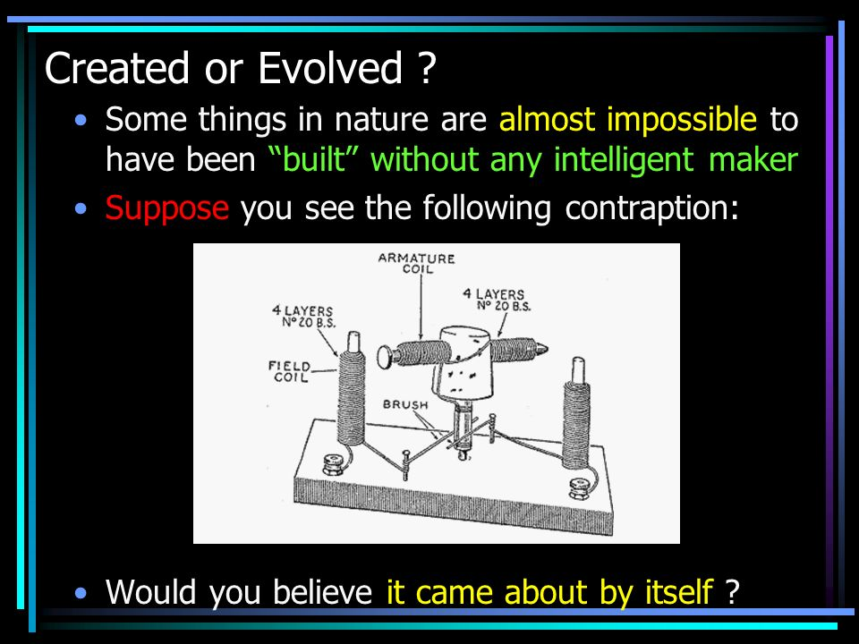 Created or Evolved Some things in nature are almost impossible to have been built without any intelligent maker.