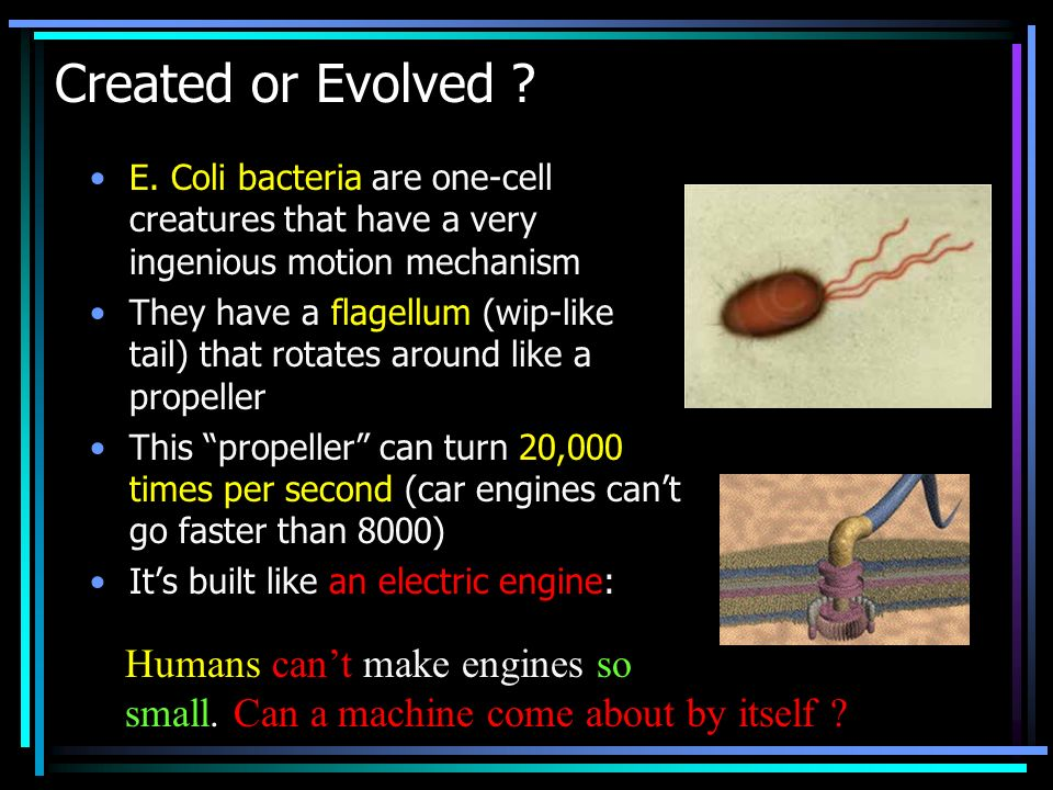 Created or Evolved Humans can't make engines so