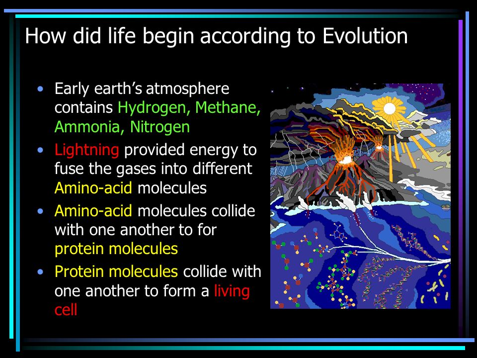 How did life begin according to Evolution