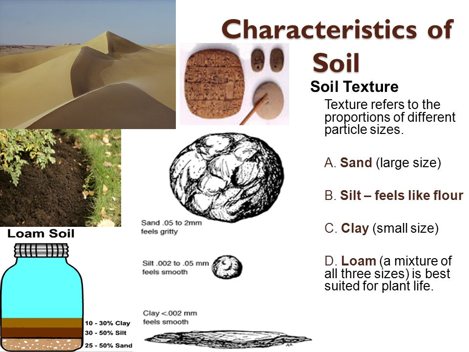 Weathering soil and mass movement ppt video online for What are soil characteristics