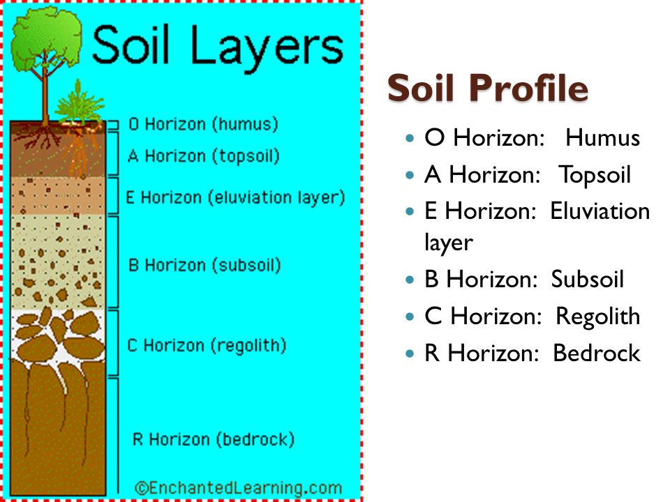 Weathering soil and mass movement ppt video online for Soil profile video
