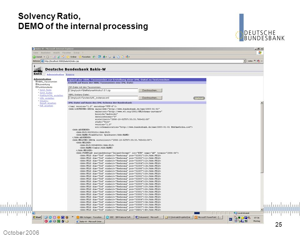 Solvency Ratio, DEMO of the internal processing