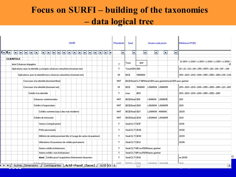 Focus on SURFI – building of the taxonomies – data logical tree