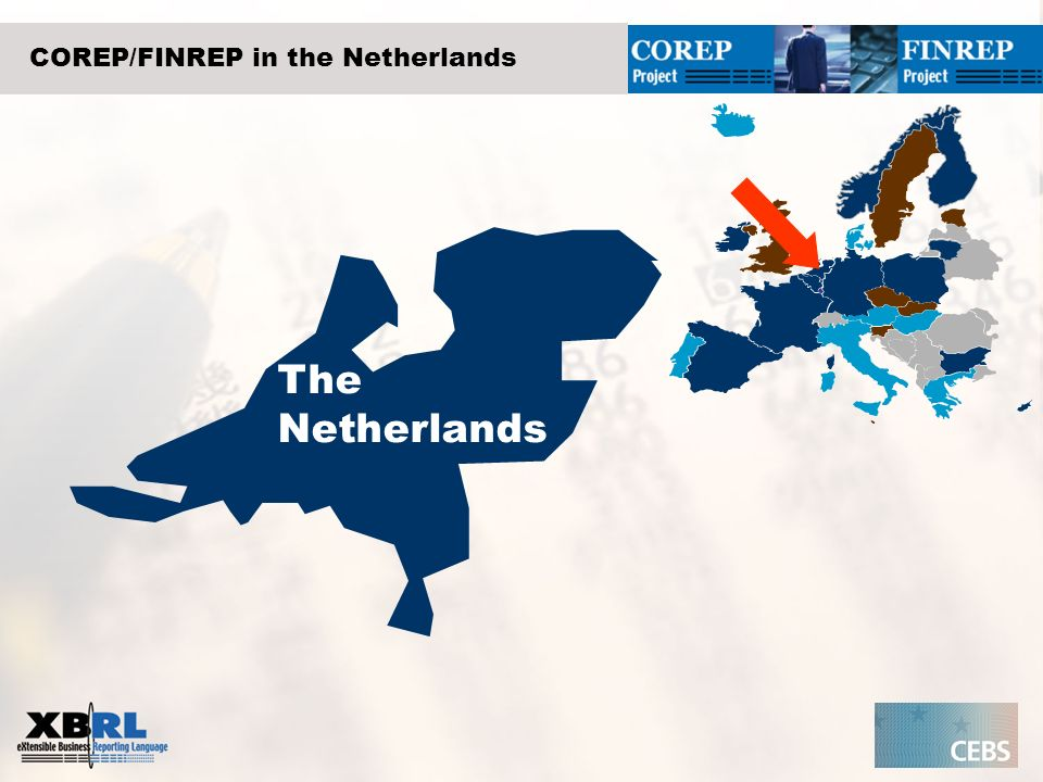 COREP/FINREP in the Netherlands