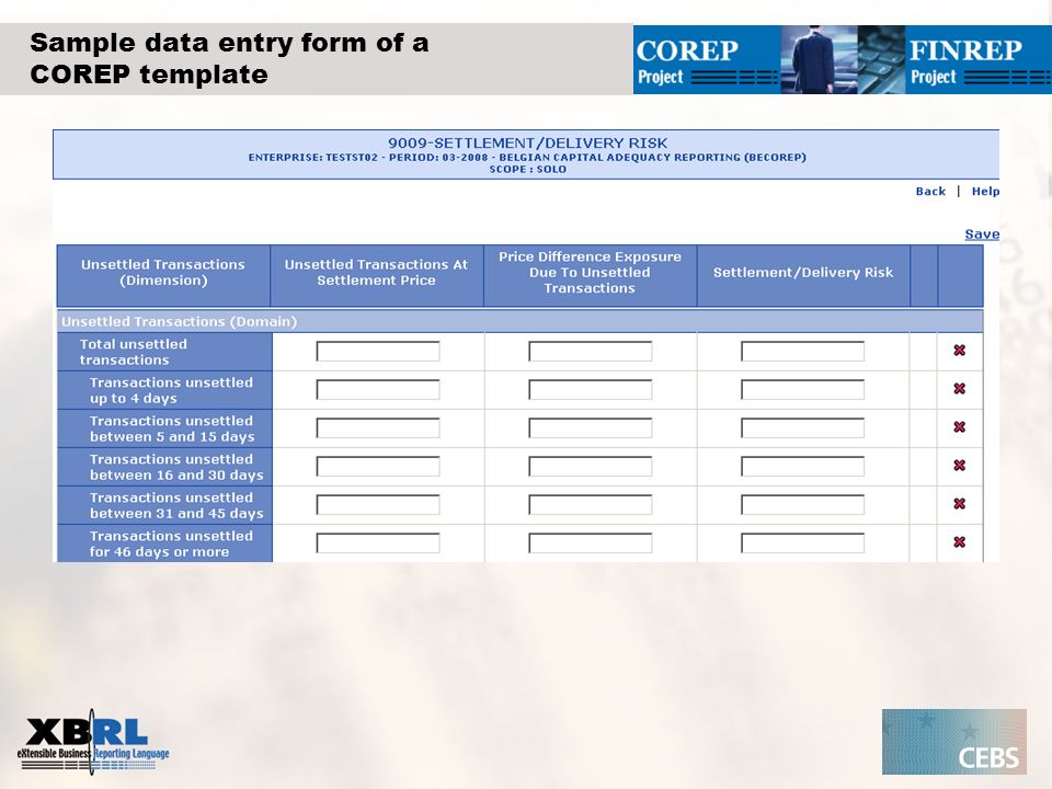 Sample data entry form of a COREP template