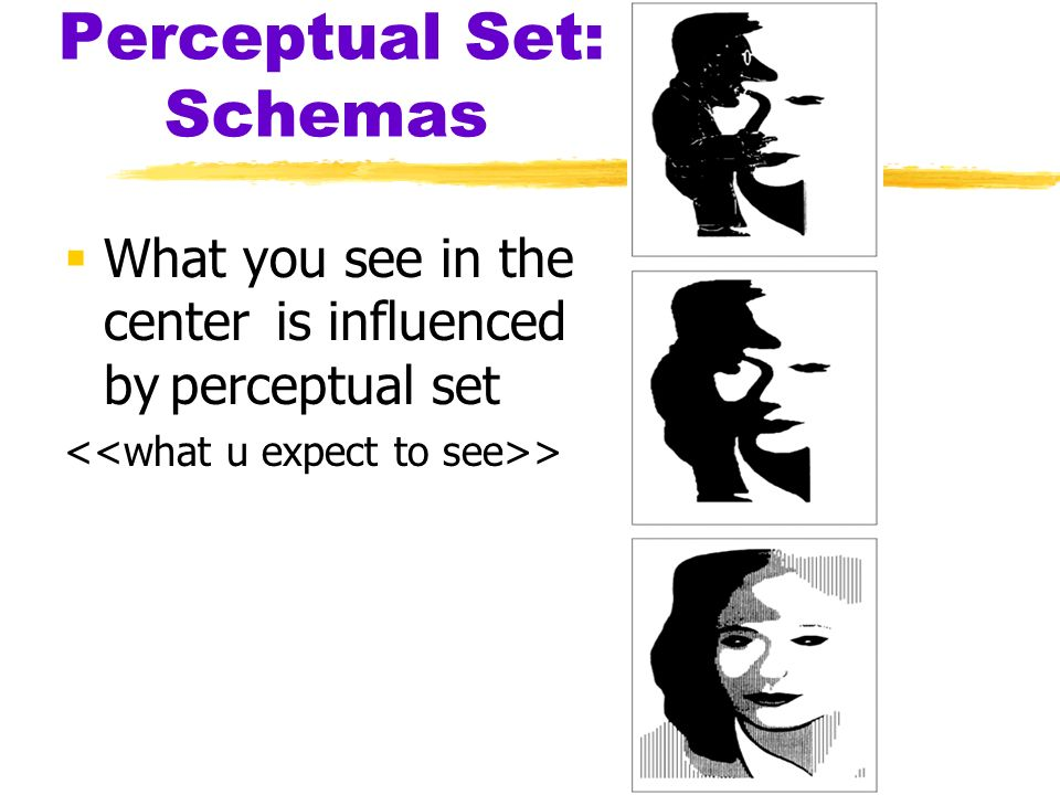 understanding perceptual sets essay Essays and criticism on harper lee's to kill a mockingbird - to kill a mockingbird to kill a mockingbird, harper lee - essay to kill a mockingbird is set in.